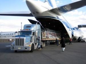 Преимущества и недостатки грузовых авиаперевозок