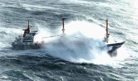 Морские грузовые перевозки: ответственность транспортной компании