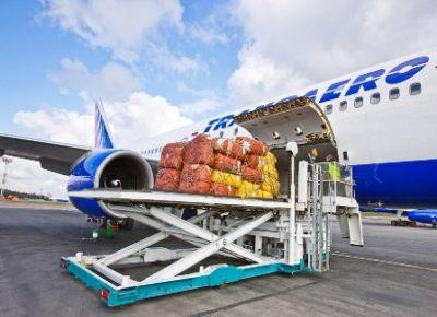 Особенности правил перевозки грузов авиационным транспортом