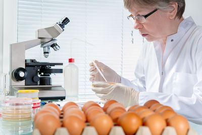 В каких случаях должна производиться обязательная сертификация продуктов питания