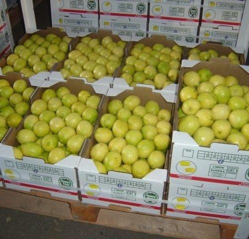Особенности авиа доставки овощей и фруктов