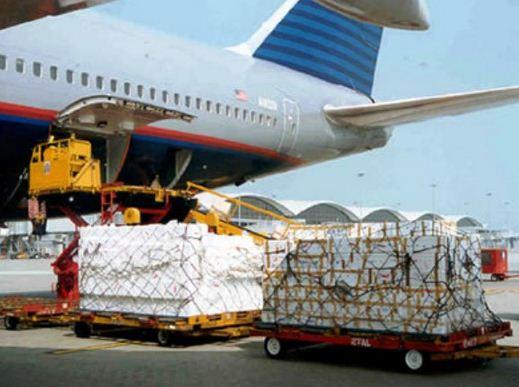 Особенности авиаперевозок для скоропортящихся и специальных грузов
